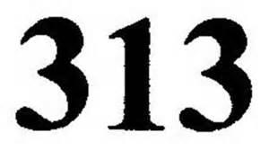 logo 313
