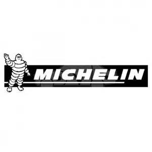 logo Michelini
