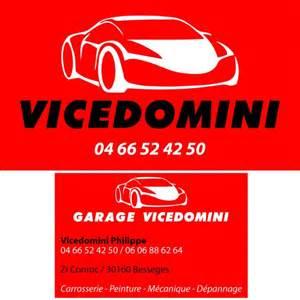 logo Vicedomini