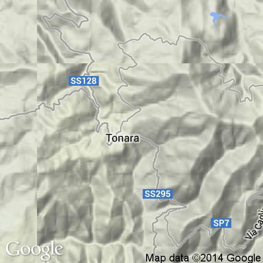 Cartina Sardegna Tonara.Mappa Di Tonara Cartine Stradali E Foto Satellitari